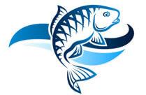 Калкулатор за рибено масло